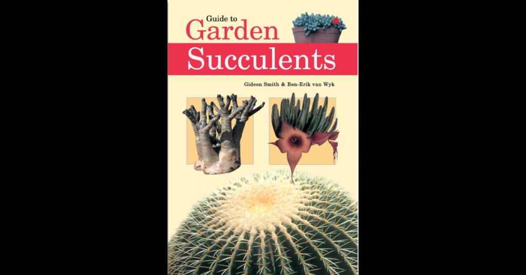 Garden succulents cover