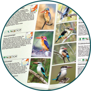 SAPPI Birds of South African Briza Publications
